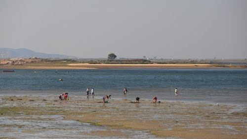 playa as saiñas